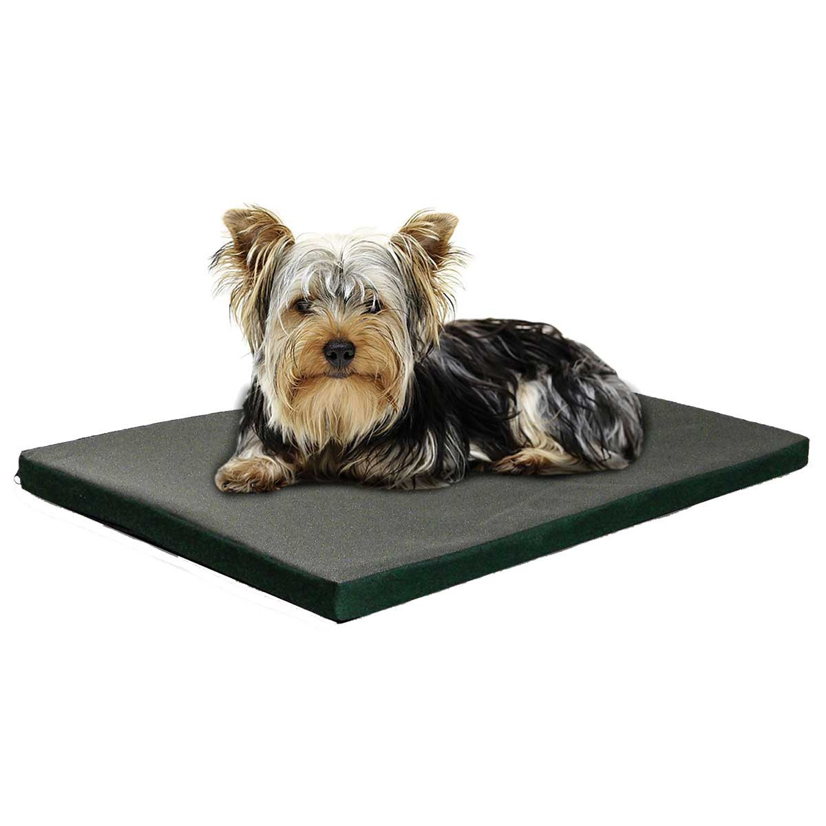 Dog on FurHaven Nap Kennel Pad - 19 inches by 12 inches