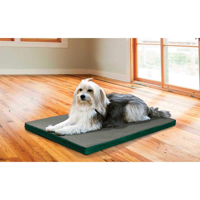 Dog sitting on FurHaven Nap Kennel Pad - 36 inches by 24 inches