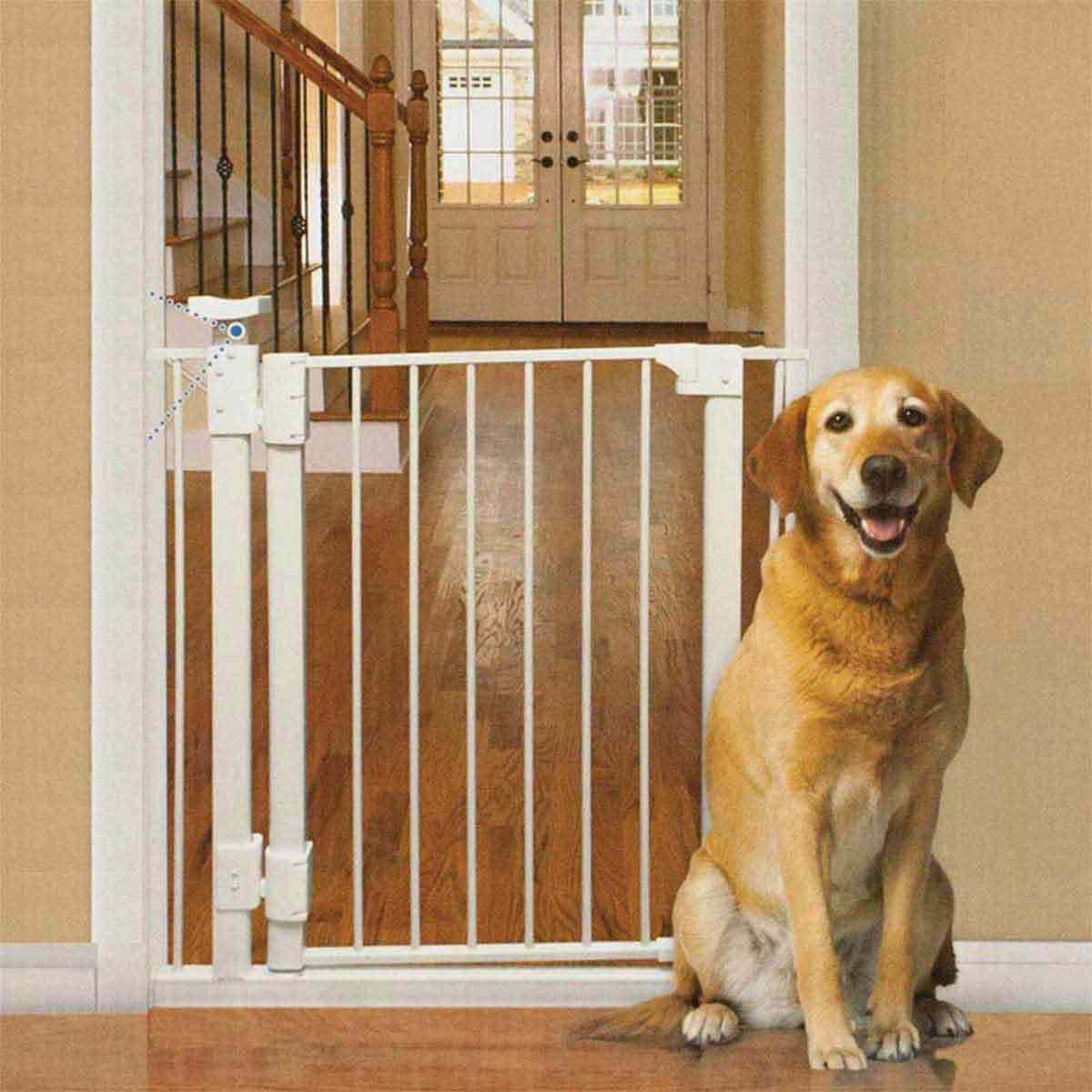 Four Paws Hands-Free Dog Gate - 30-34 inches wide by 32 inches high