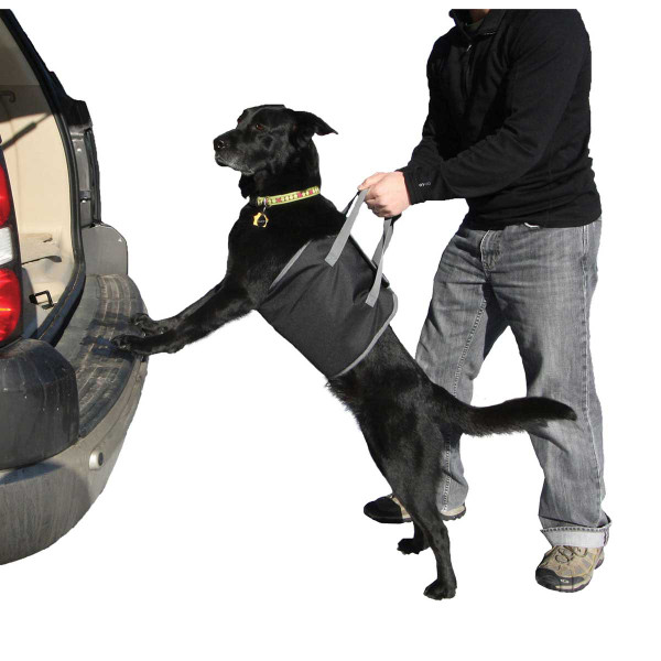 Outward Hound Pupboost Harness Easy-Lift Padded Dog Harness for Traveling with Dogs