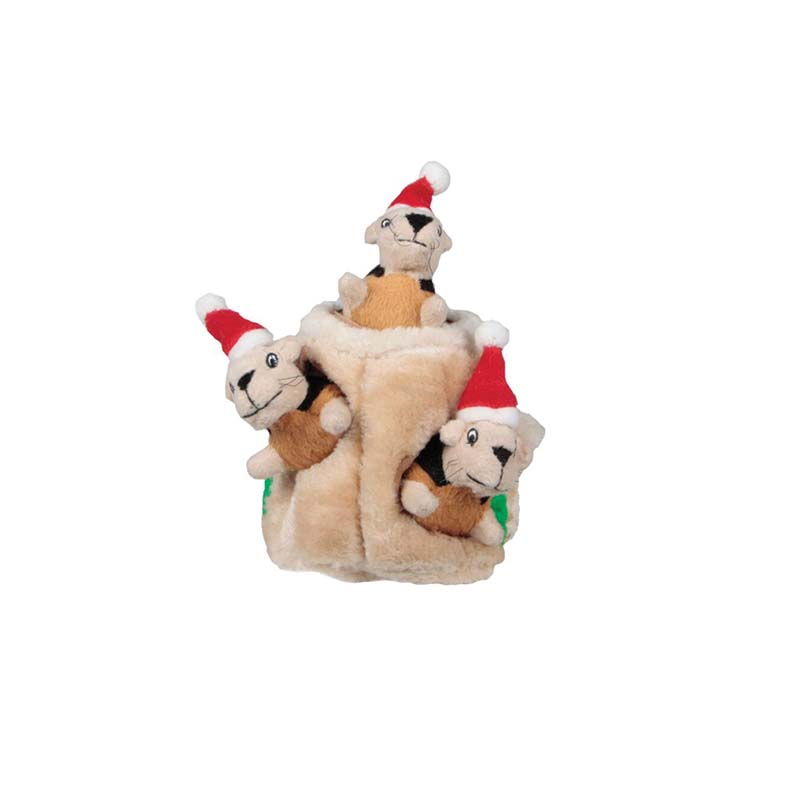 Small Outward Hound Holiday Hide-A-Squirrel Dog Toy at Ryan's Pet Supplies