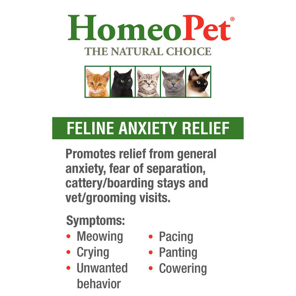 Benefits of Homeopet Feline Anxiety
