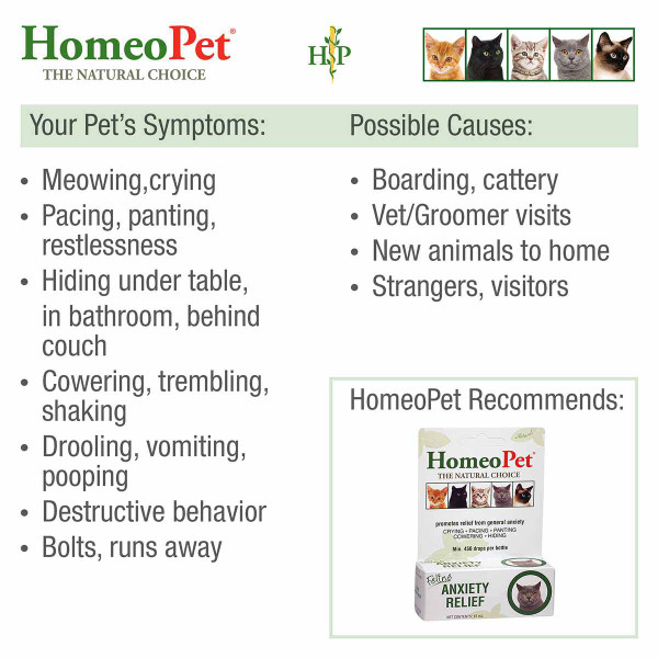 Symptoms to prescribe Homeopet Feline Anxiety
