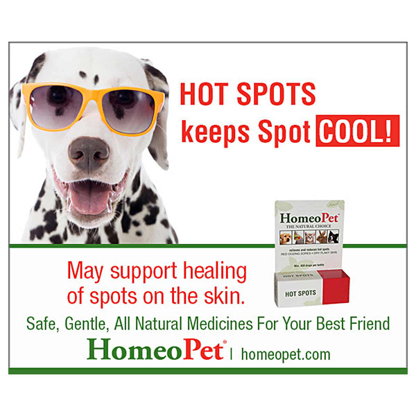 Support healing of the skin with HomeoPet Hot Spot