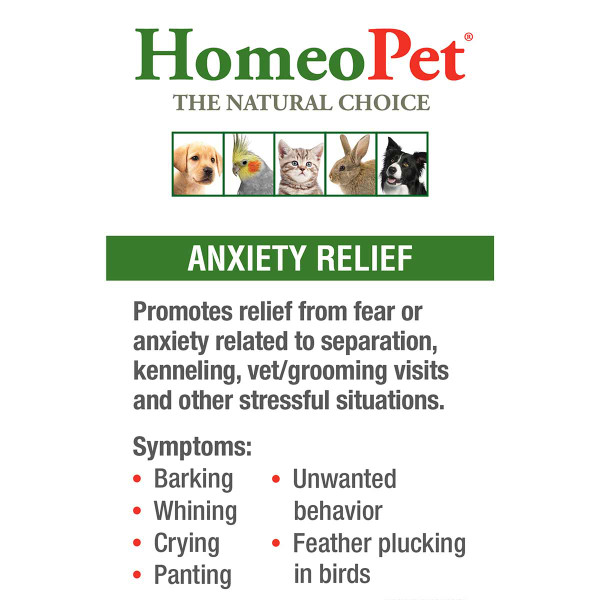 Promote relief from anxiety separation with HomeoPet Anxiety Relief