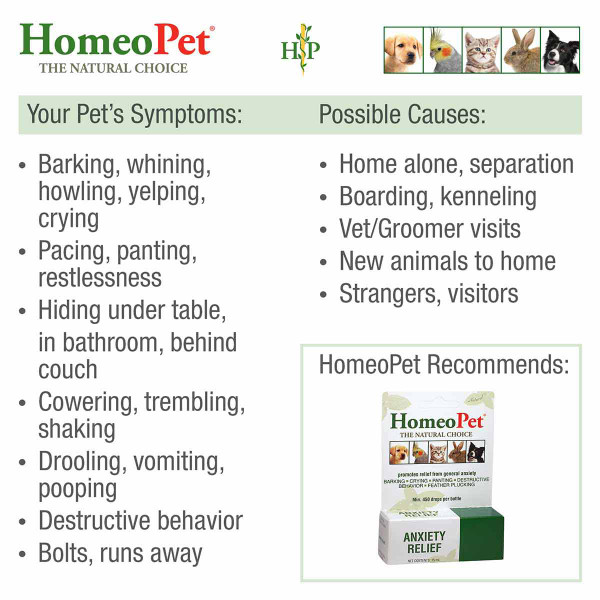 Symptoms treatable with HomeoPet Anxiety Relief pet supplement