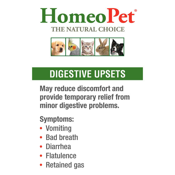 Treat symptoms of digestive problems with HomeoPet Digestive Upsets