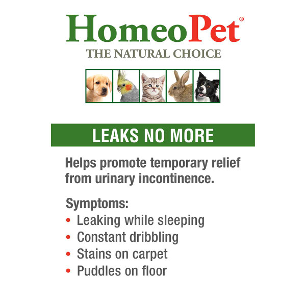 Help promote temporary relief from urinary incontinence with HomeoPet Leaks No More