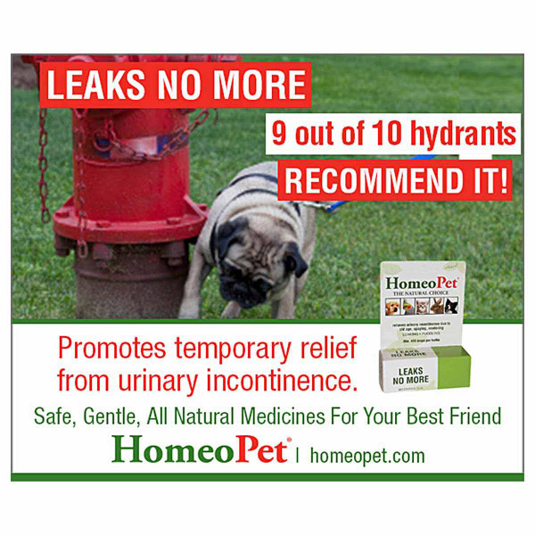 Promotes temporary relief from urinary incontinence with the HomeoPet Leaks No More pet supplement