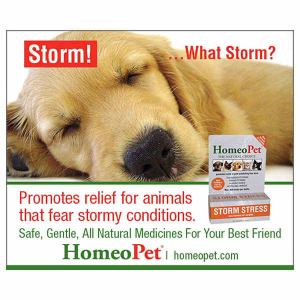 Promote relief for animals with feat of storms with the HomeoPet Storm Stress K-9 Pet supplement