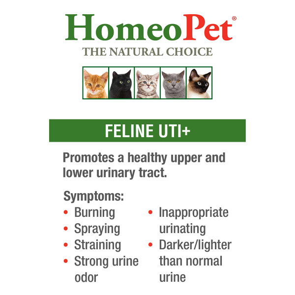 Promote a healthy upper and lower urinary tract with the HomeoPet Feline UTI pet supplement