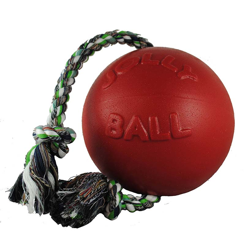 Large Jolly Pet Romp-n-Roll Red Dog Toy at Ryan's Pet Supplies