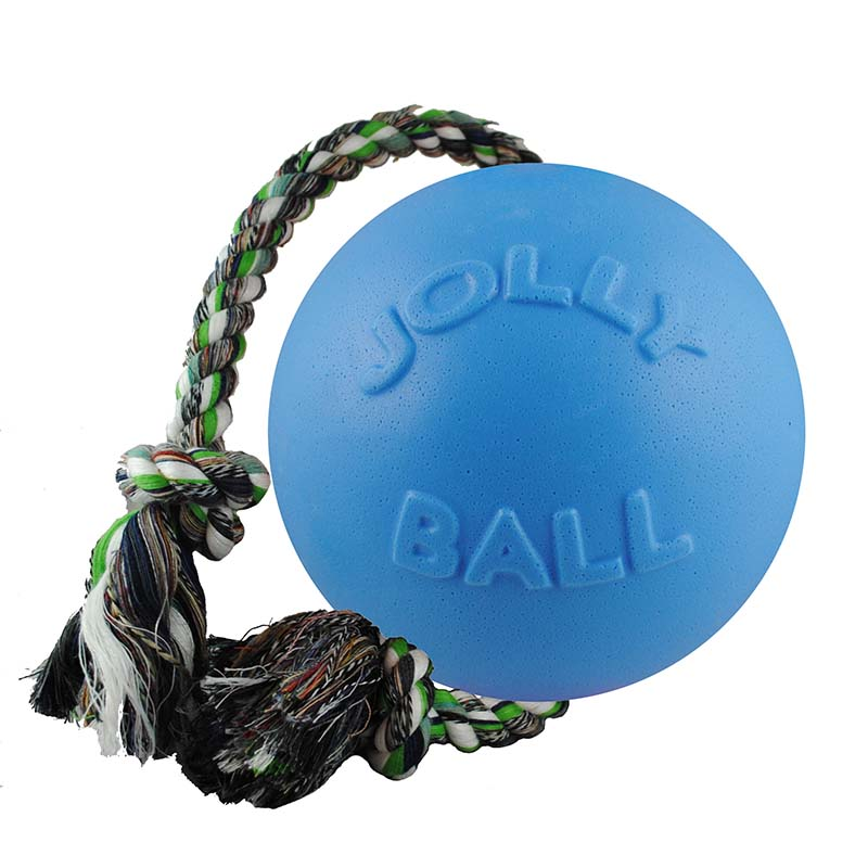 Blueberry Medium Jolly Pet Romp-n-Roll Dog Toy Ball at Ryan's Pet Supplies