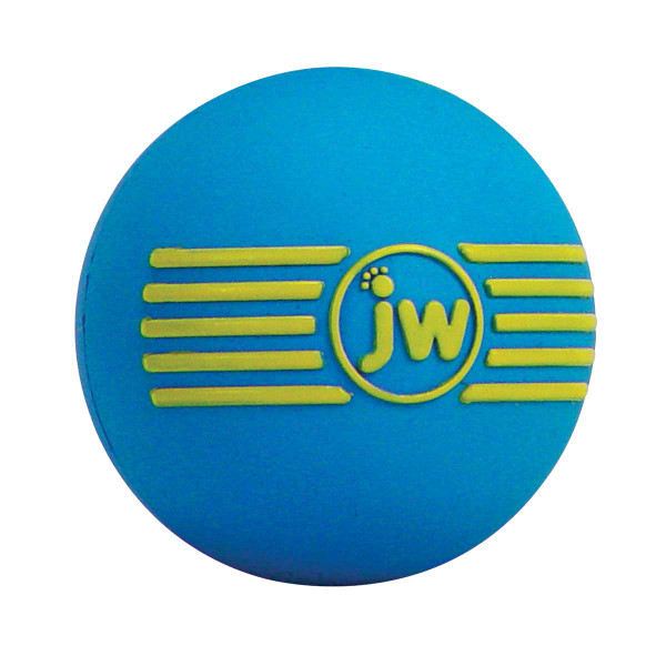 Blue JW Isqueak Large 4 inch Ball for Dogs