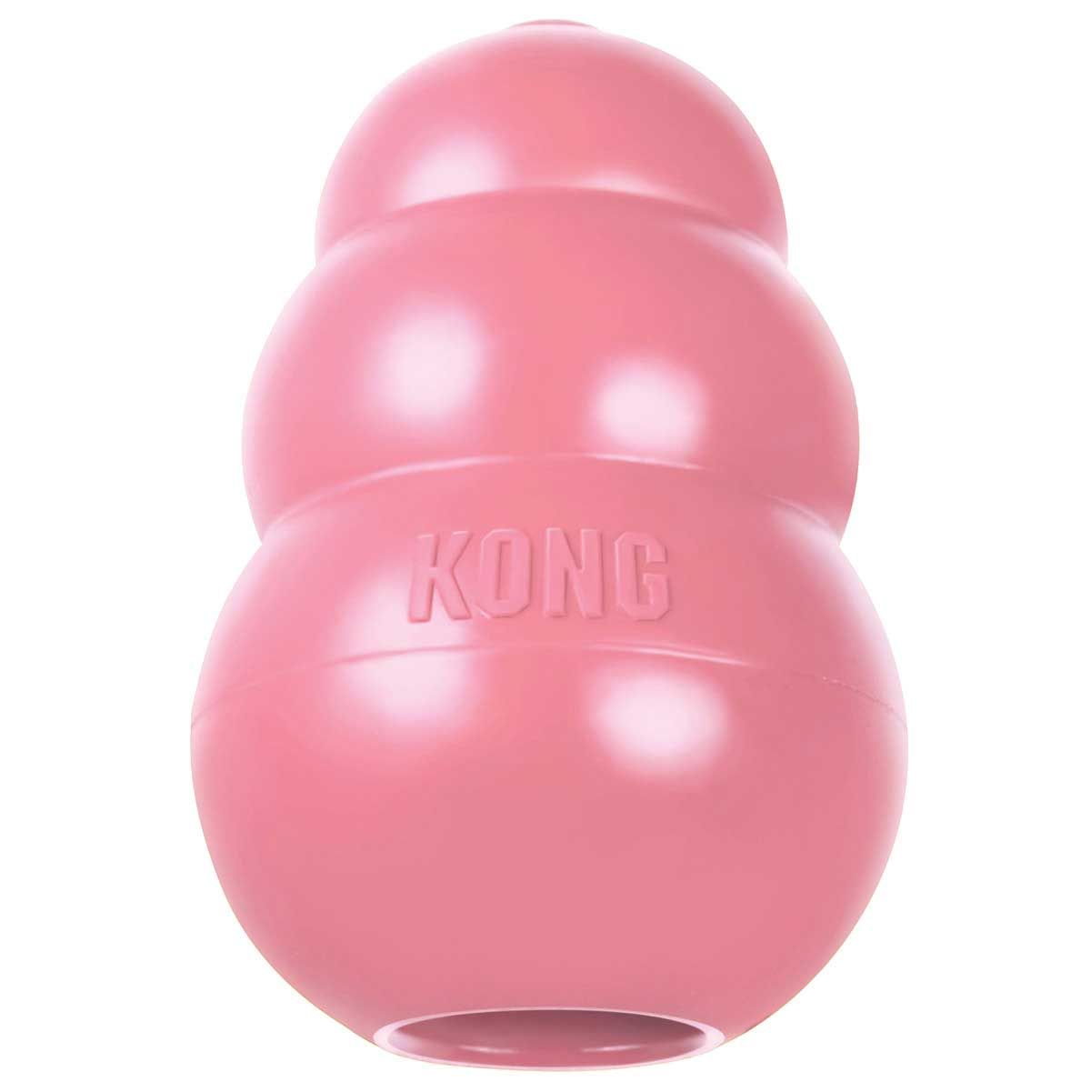 Large Puppy KONG Toy