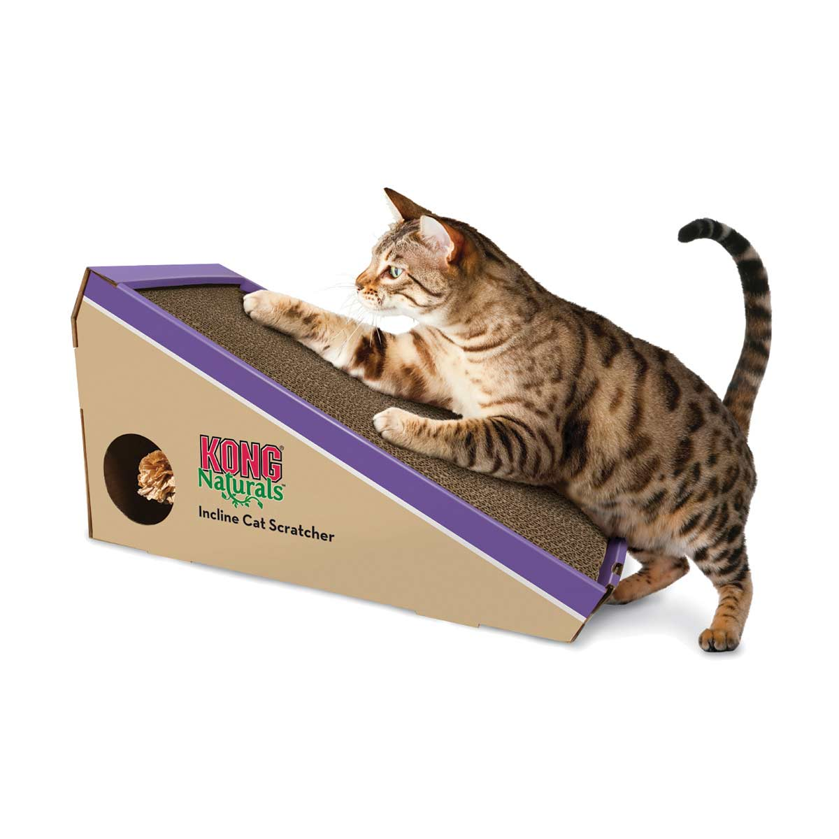 KONG Incline Scratcher for Cats at Ryan's Pet Supplies