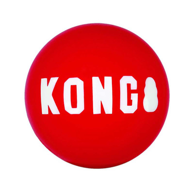 Large KONG Signature Ball Dog Toy