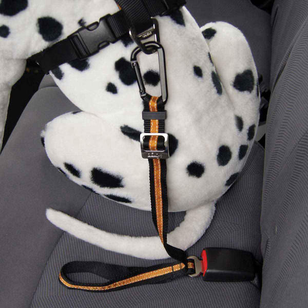 Dalmation dog wearing Black/Orange Kurgo Direct to Seatbelt Tether