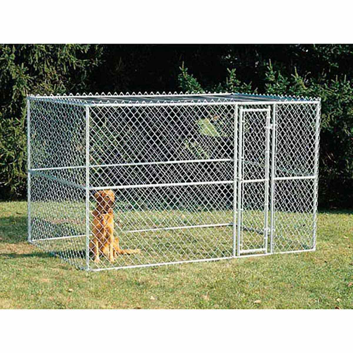Midwest K9 Kennel for Dogs - 6 feet by 4 feet by 4 feet
