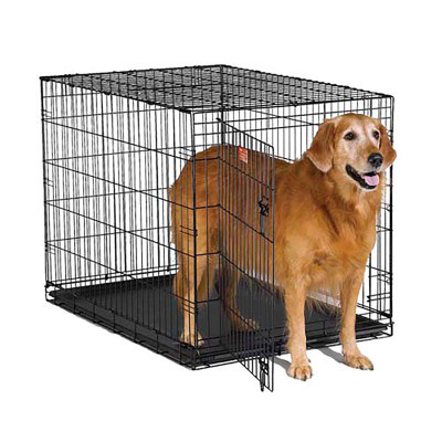 Midwest Icrate Single Door 42 inches by 28 inches by 30 inches available at Ryan's Pet Supplies