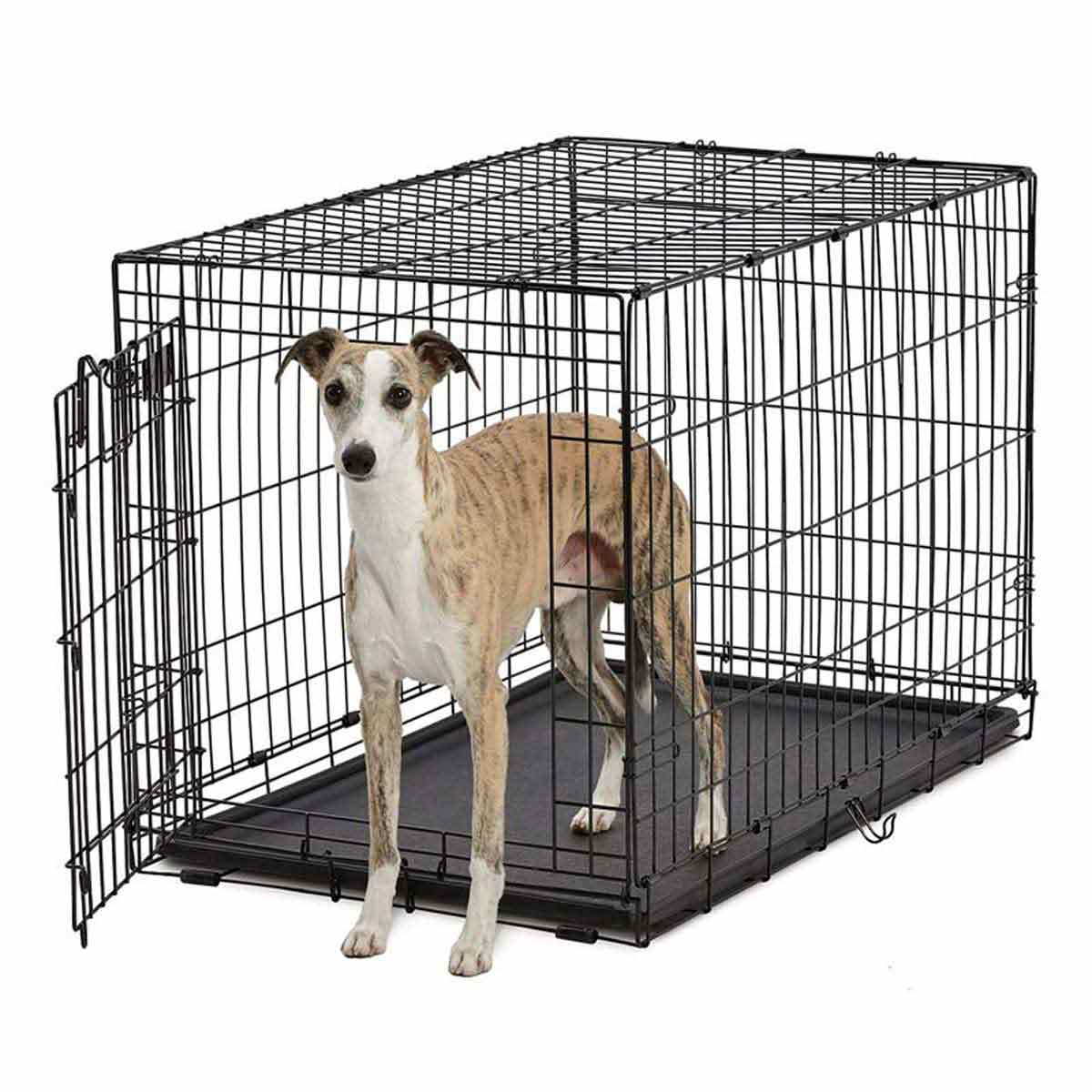 Life Stage A.C.E. Single Door Kennel for Dogs - 36.5 inches by 22.75 inches by 24.75 inches