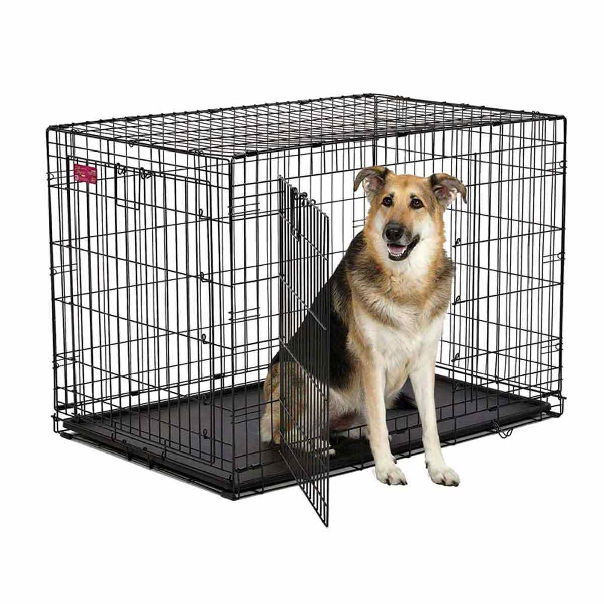 Mdwest Life Stage A.C.E. Double Door Crate for Dogs - 42.75 inches by 28.5 inches by 30.5 inches