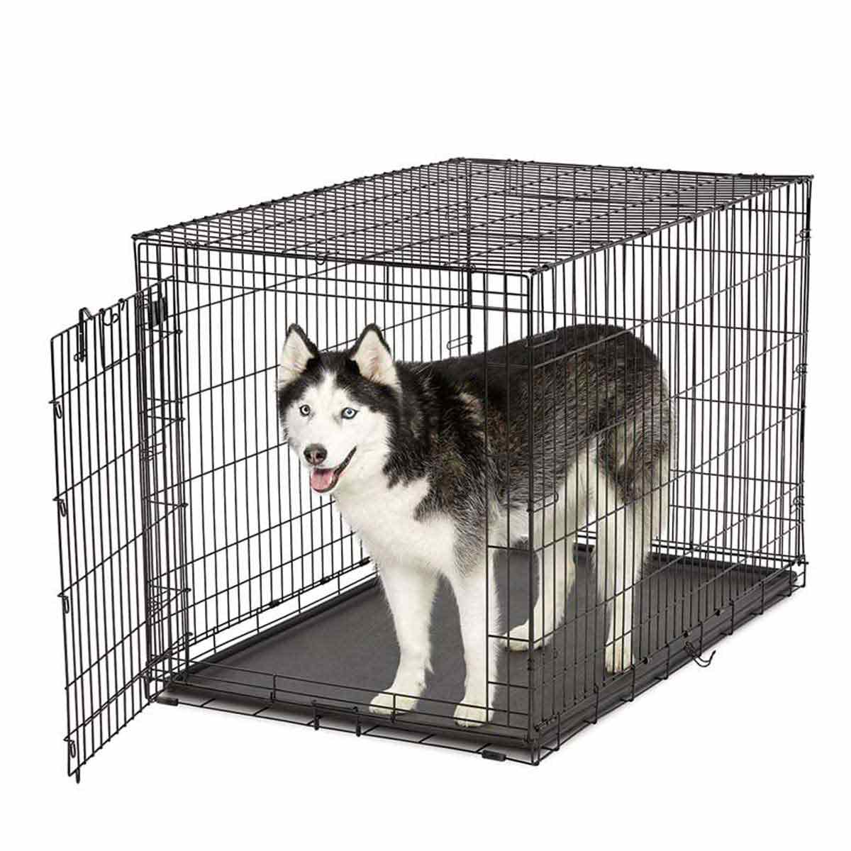 Midwest Life Stage A.C.E. Single Door Dog Kennel - 48.75 inches by 30.25 inches by 32.5 inches