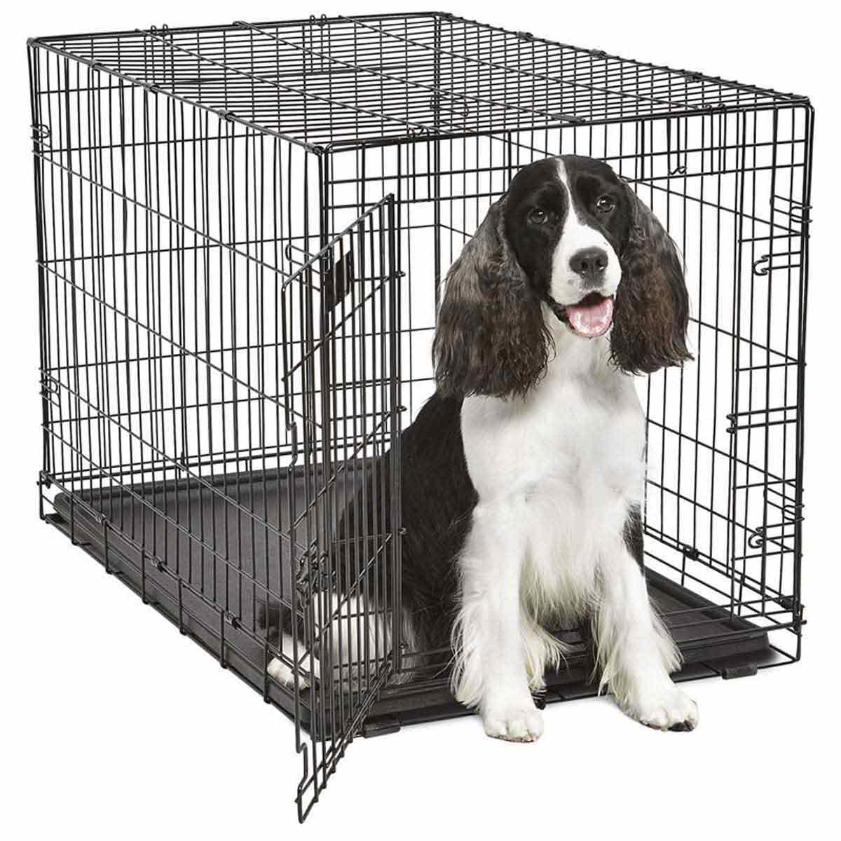 Midwest ConTour Single Door Crate for Dogs - 36 inches by 22 inches by 24 inches
