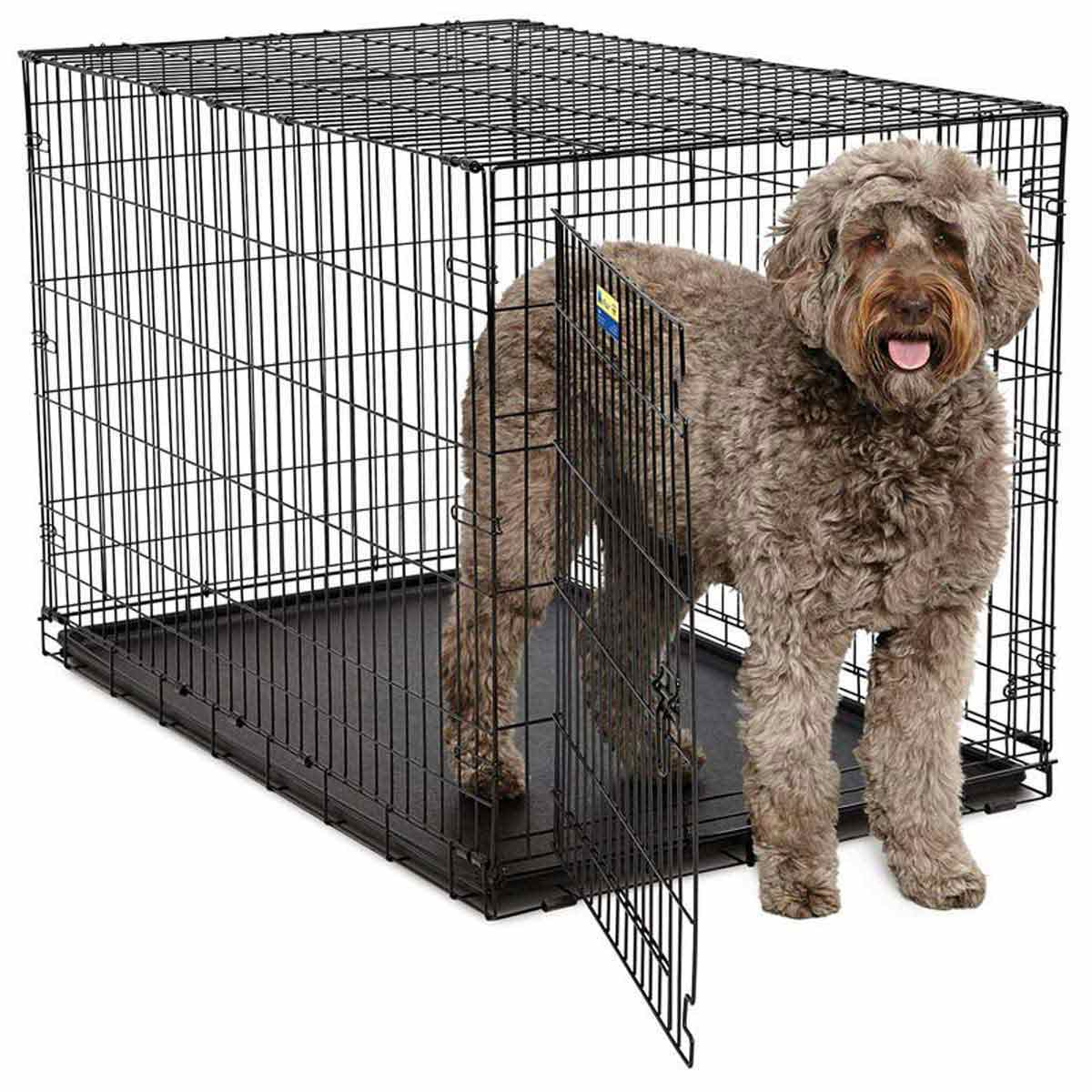 Midwest ConTour Single Door Crate for Medium Dogs - 48 inches by 30 inches by 32 inches