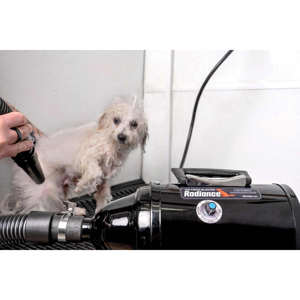 Groomer using MetroVac Air Force Blaster Radiance Black to dry dog