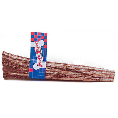 Newt's Chews Premium Elk Antler Small/Medium 5 - 7 inches