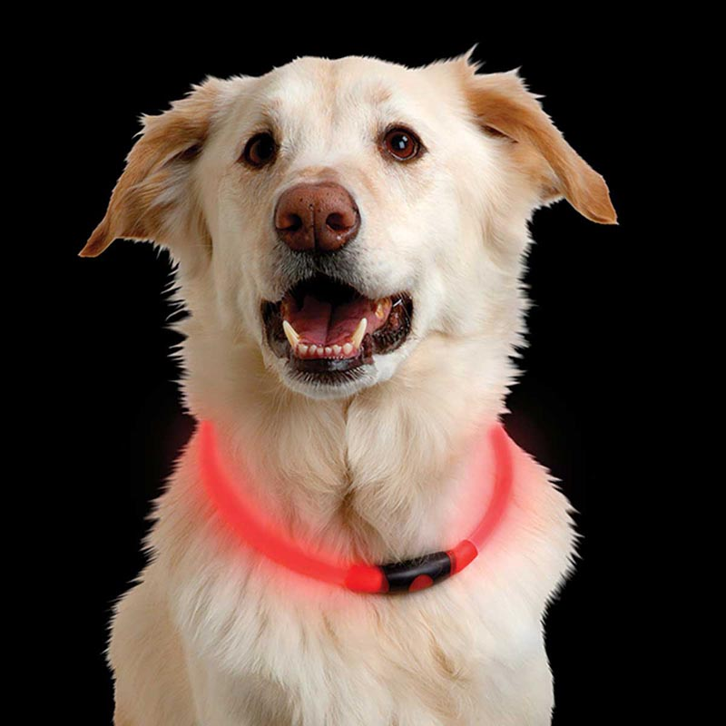 Nite Ize Nitehowl Led Safety Necklace Red for Dogs