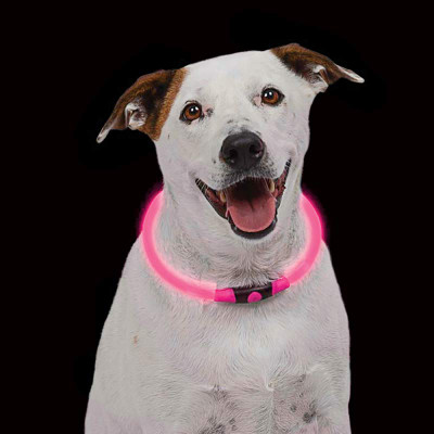 Nite Ize Nitehowl Pink LED Safety Necklace for Dogs