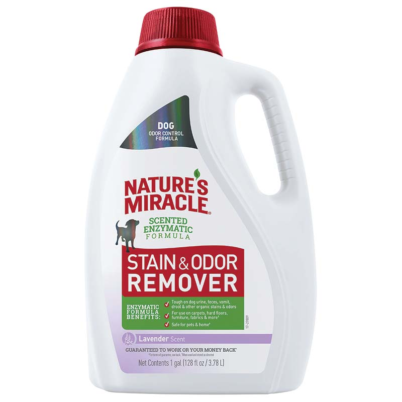 Gallon Lavender Dog Nature's Miracle Stain and Odor Remover at Ryan's Pet Supplies