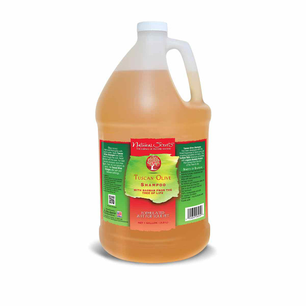 Gallon of Natural Scents Tuscan Olive Shampoo