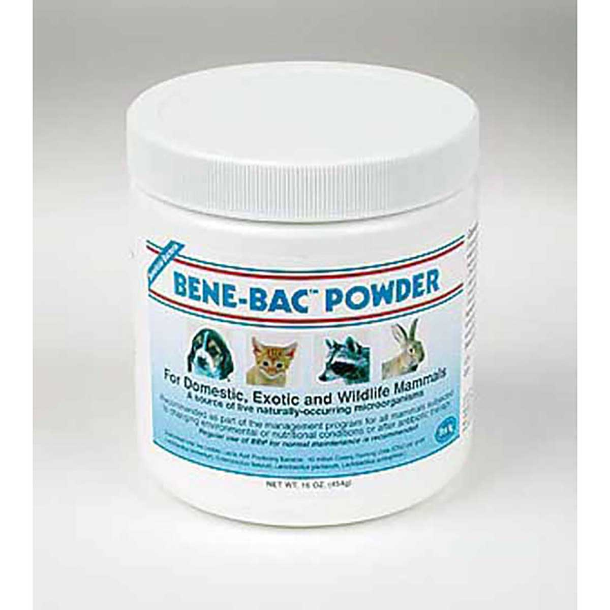 PetAg Bene-Bac Pet Powder for Domestic, Exotic and Wildlife Animals - 1 Lb