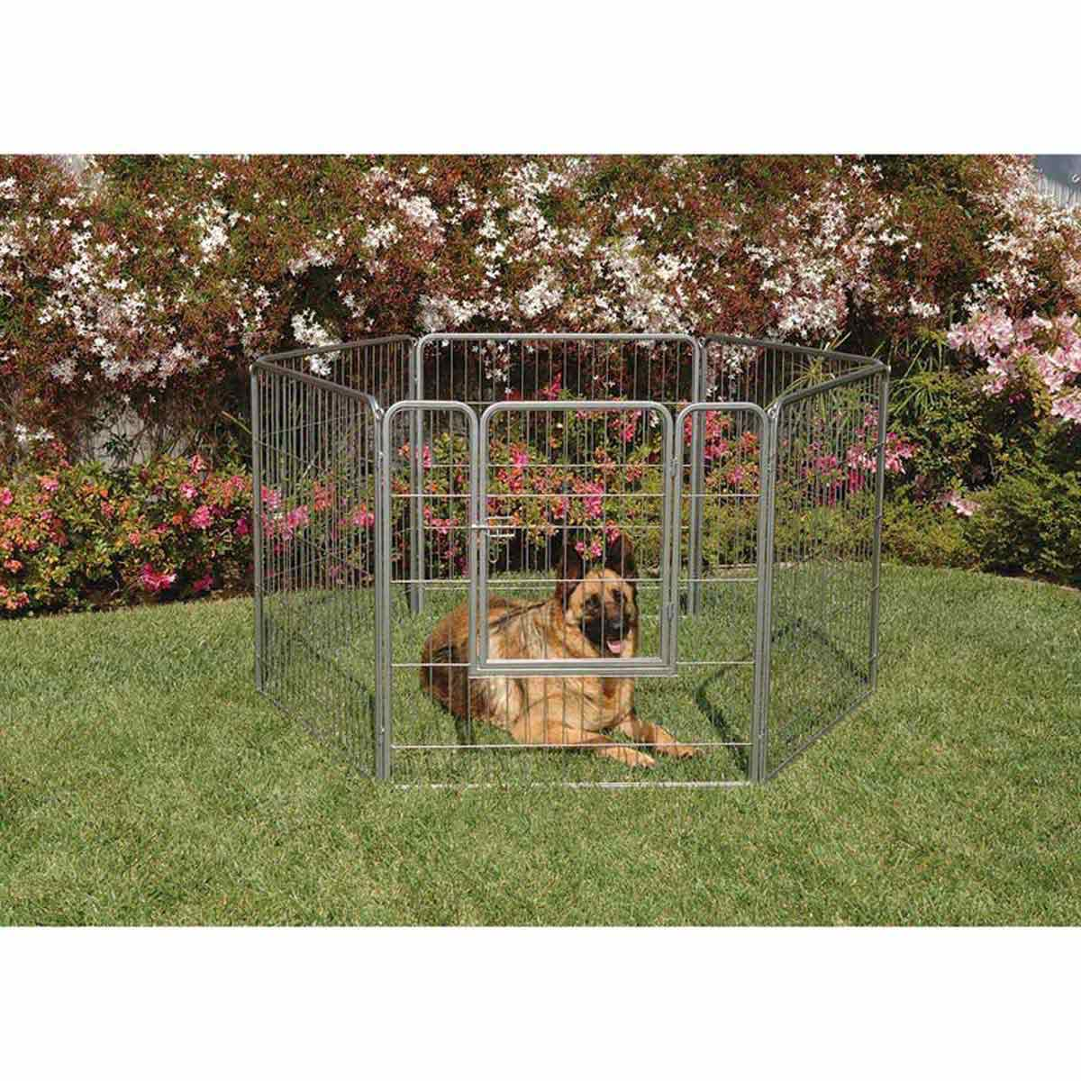 Precision Courtyard Kennel for Dogs with Gate - 6 Panels