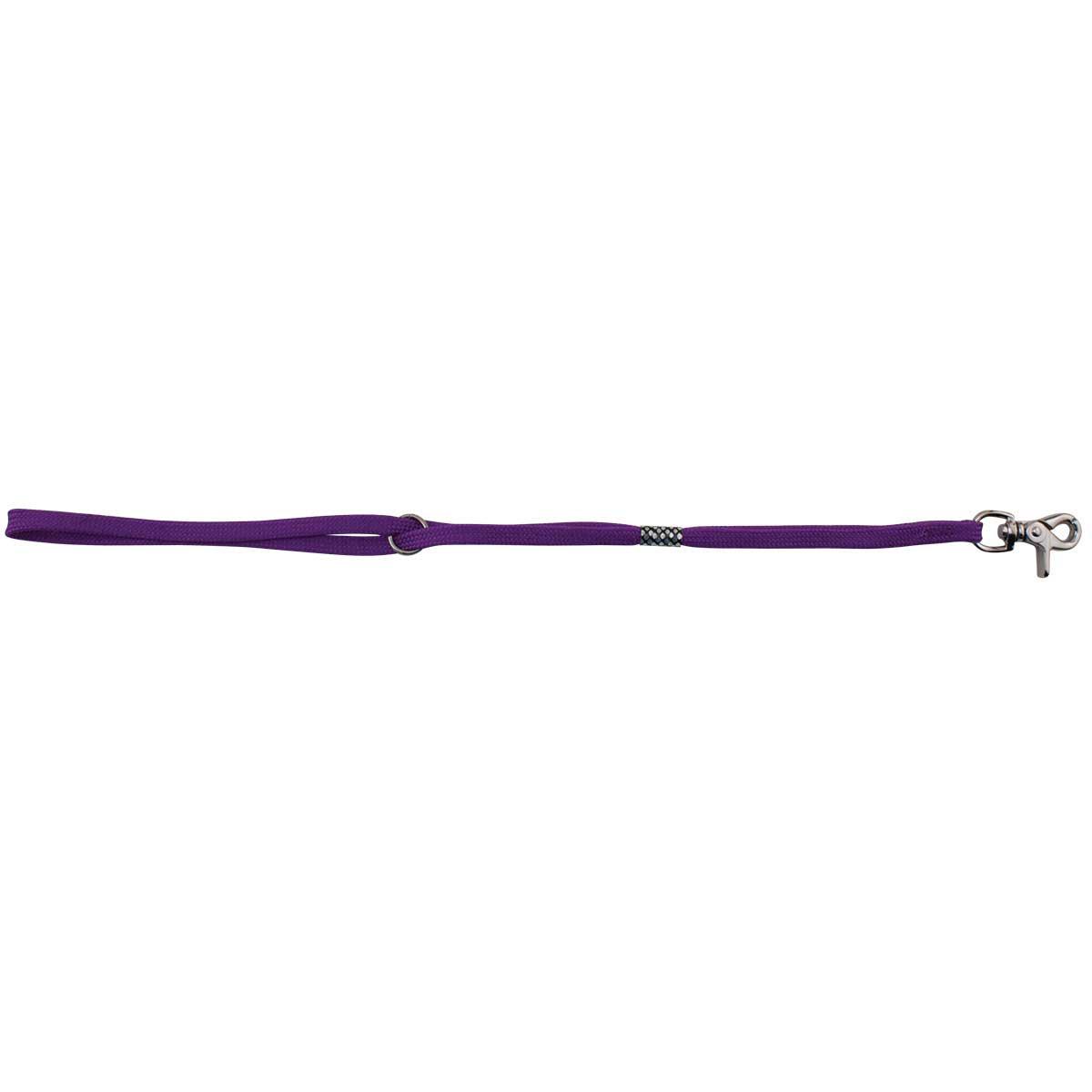 Professional Groomer Slip-Style Purple Grooming Loop