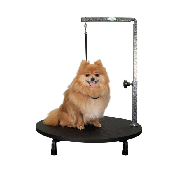 Paw Brothers 24 inch Rotating Table Top Grooming Station