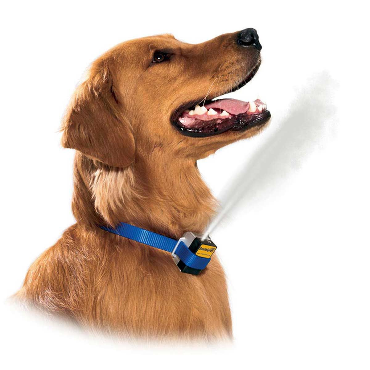 GentleSpray Bark Collar - Sprays Citronella for Pet Correcting