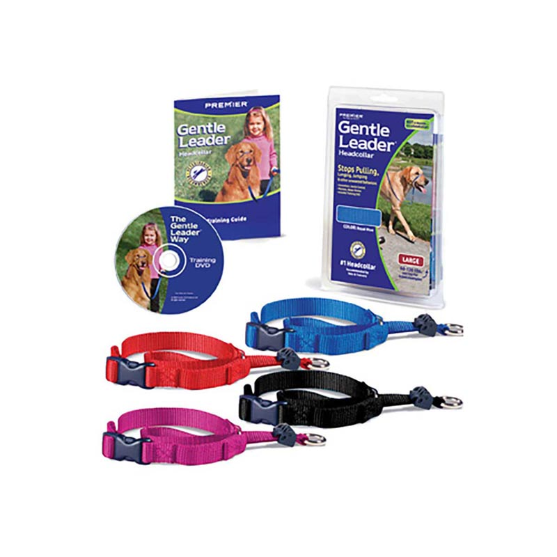Gentle Leader Quick Release Head Collar for Medium Dogs 25 - 60 lbs