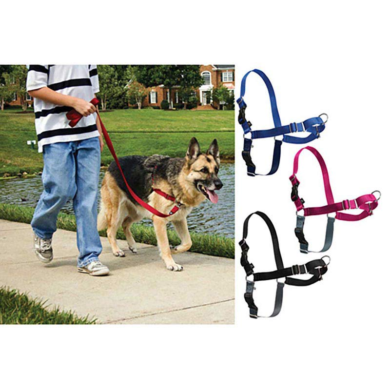 Easy Walk Harness Petite Less Than 5 Lbs