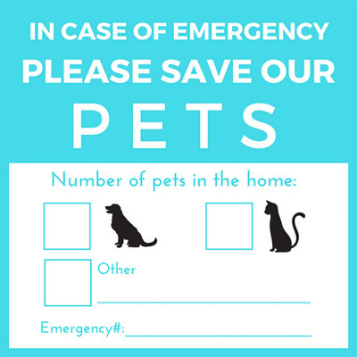 Save Our Pets Sticker - Teal