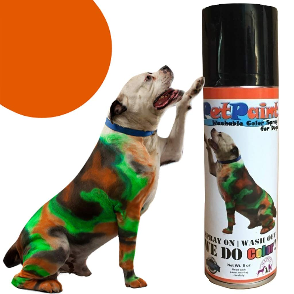 Pet Paint Orange Colored Washable Fur Spray