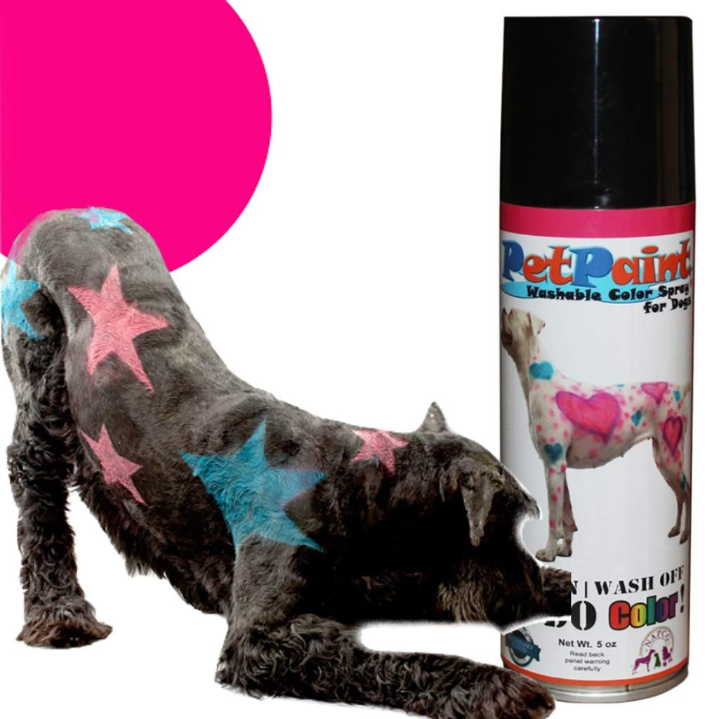 Pet Paint Poodle Pink Colored Fur Spray for Dogs