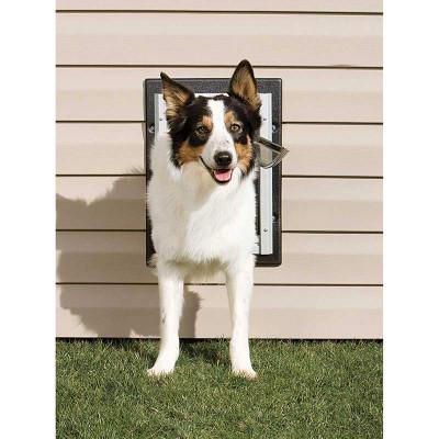 Dog using PetSafe Wall Entry Large Pet Door
