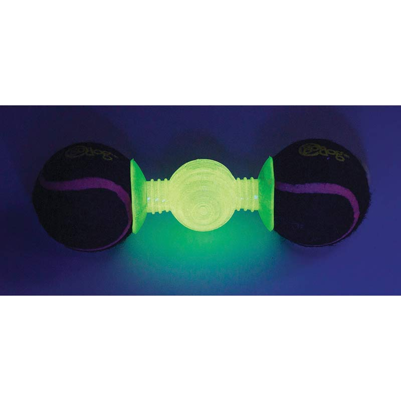 goDog Retrieval goBone Glow in The Dark Large for Night Play Outside