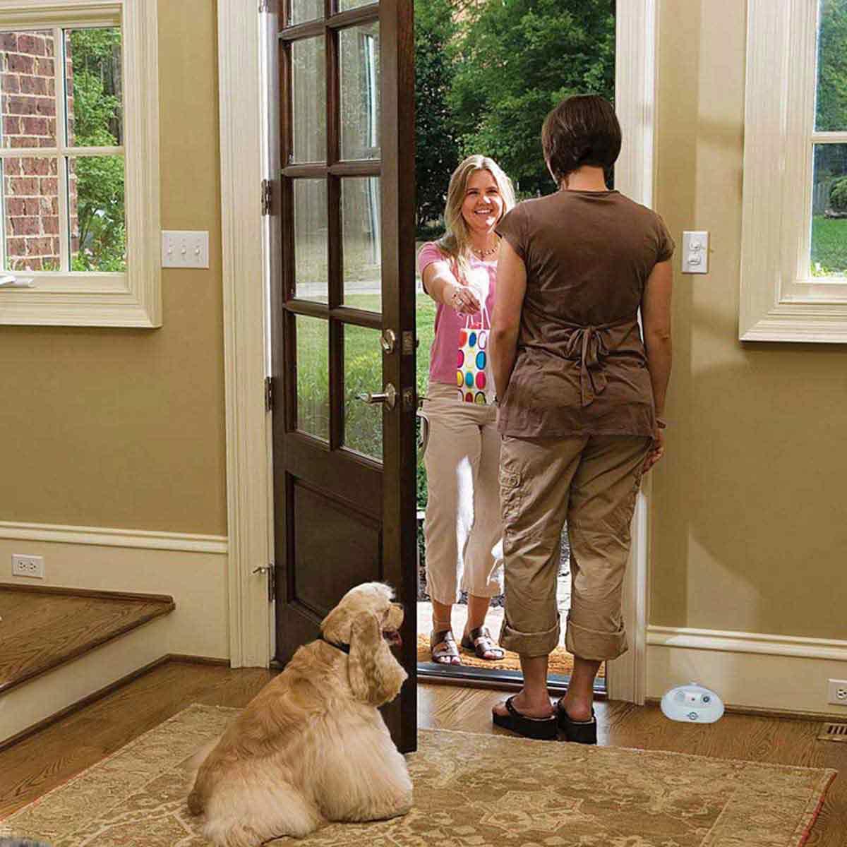 PetSafe Indoor Ultrasonic Bark Control by door