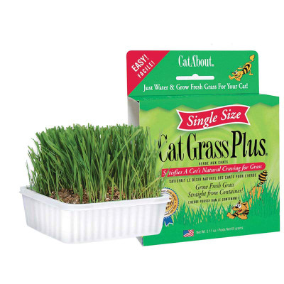Cat A'bout Cat Grass Plus - Grow Your Kitty Fresh Grash