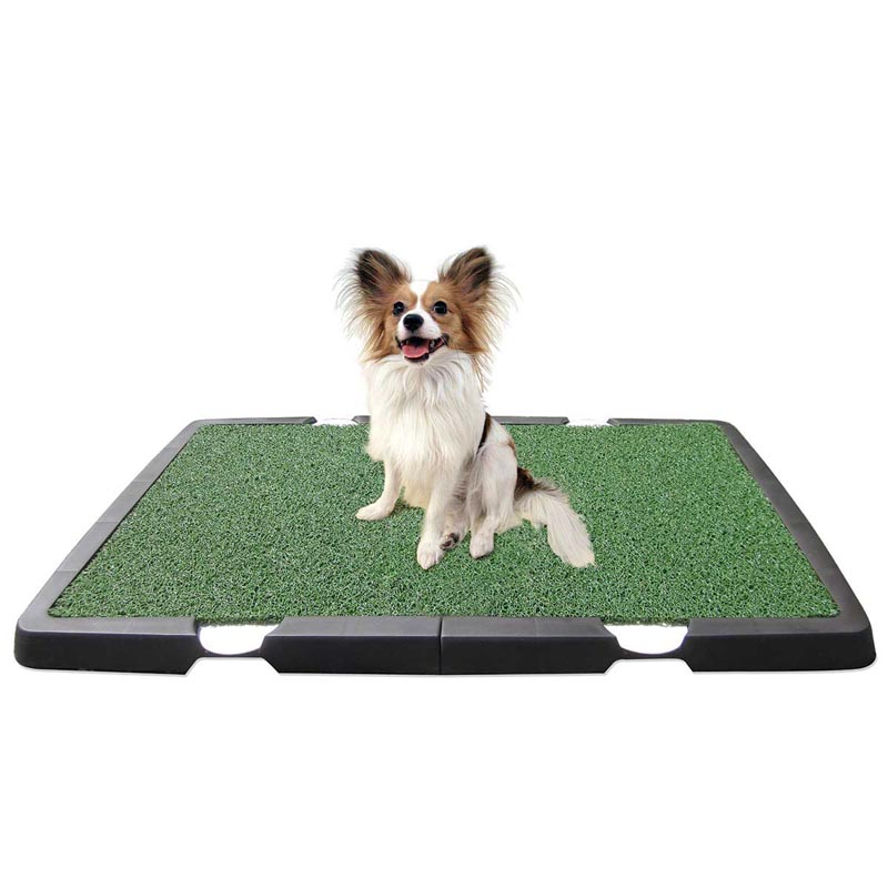 Spotty Training Place for Dogs 32 inch by 21 inch